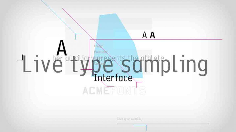 ACME Fonts Website Design & Development